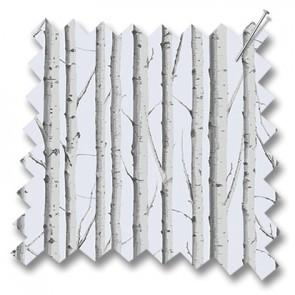 Slilver Birch